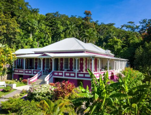 Book signing at the Charlotte Estate Dominica  -Thursday 4th February from 4pm
